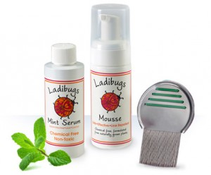 Ladibugs lice elimination Serum, Mousse, and Metal Microgrooved Comb.