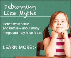 Lice Myths