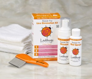 Ladibugs Head Lice Elimination Kit