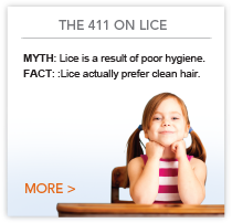 The 411 on lice.