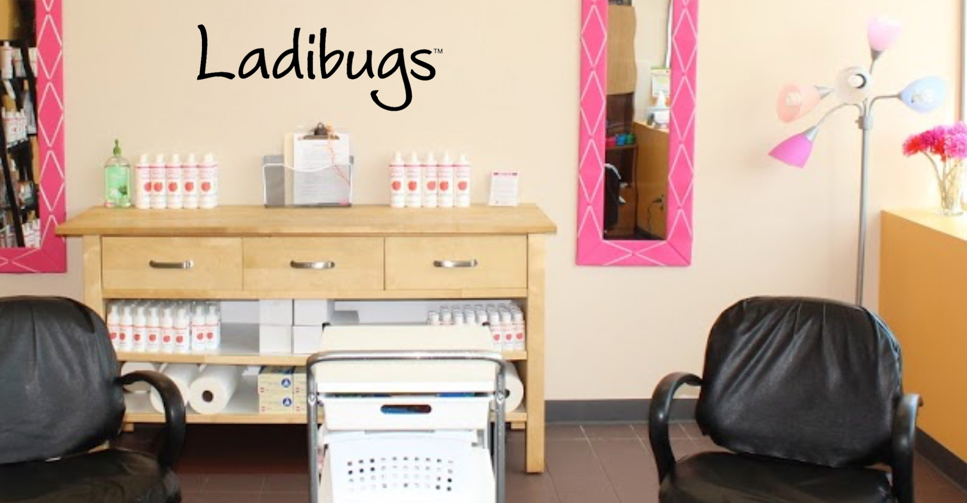 Ladibugs Lice Removal Clinic