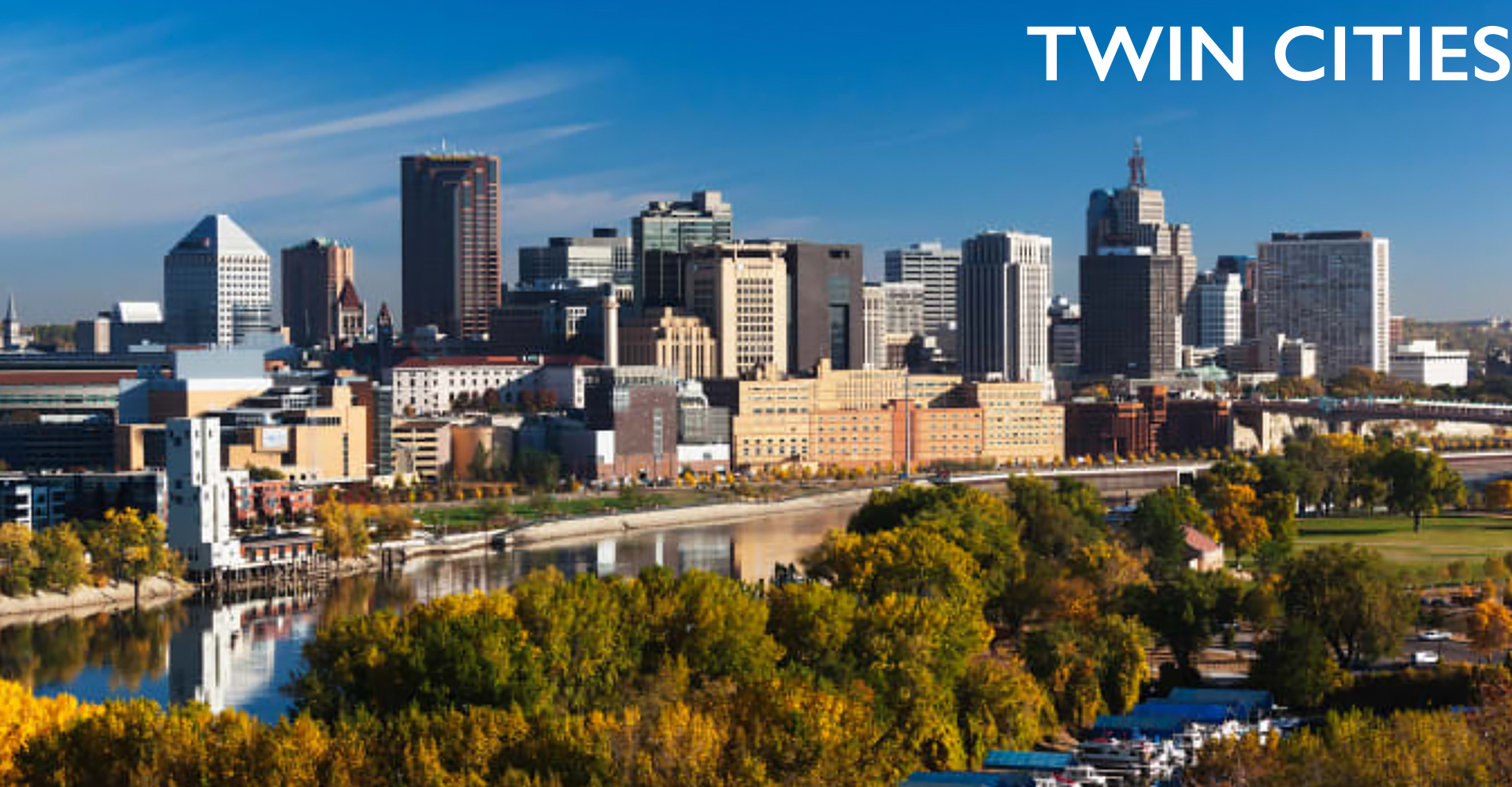 Twin Cities lice treatment